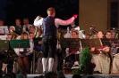 Großkonzert Hart 2015